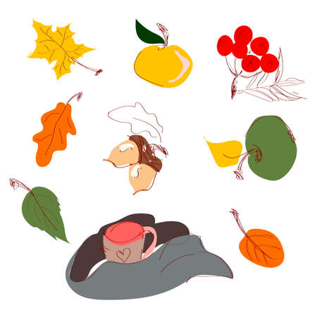Autumn foliage leaves icons acorn, maple or elm and rowan, mug wrapped with a scarf. Vector autumn sale poster, flyer or web banner, childrens books.