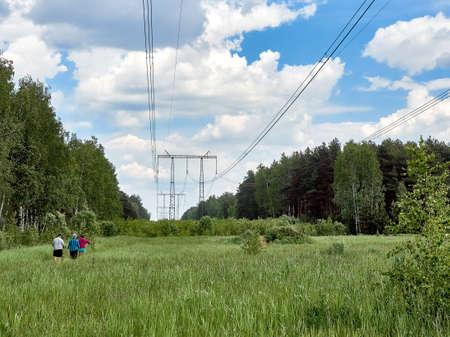 Été, herbe verte fraîche, champ, forêt, tours de transmission de puissance