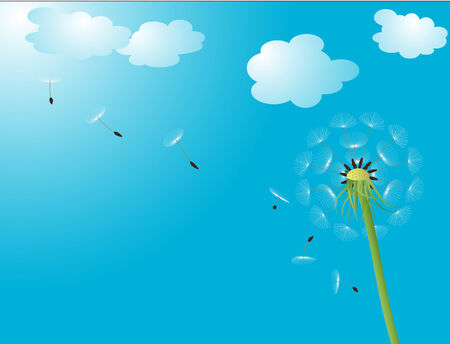 vector illustration of a dandelion head with seeds flying into blue sky
