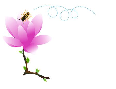 vector raster background: vector  illustration of a single magnolia flower Illustration