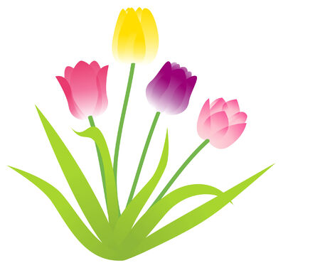 Raster illustration of a bunch of colorful tulip flowers Illustration