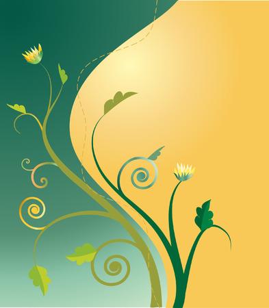 vector illustration of chrysanthemum plant on golden green background