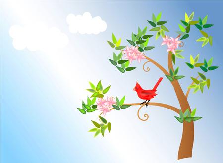 spring: vector illustration of a spring blossom tree with cardinal bird