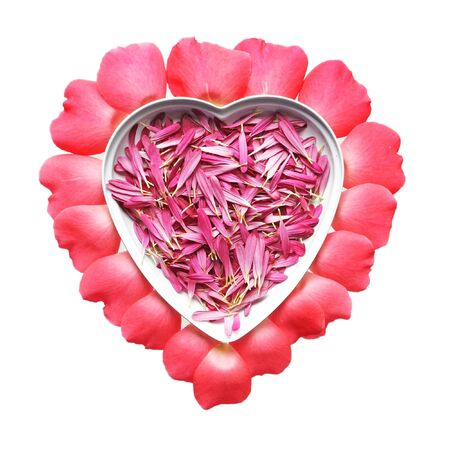 Chrysanthemum and rose petals forming a heart shape Stock Photo - 4246919