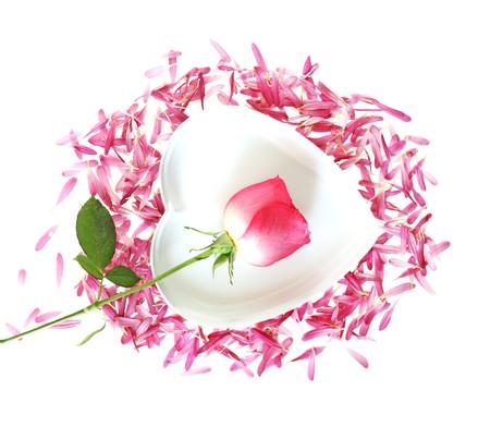 Rose and chrysanthemum petals forming a heart  Reklamní fotografie