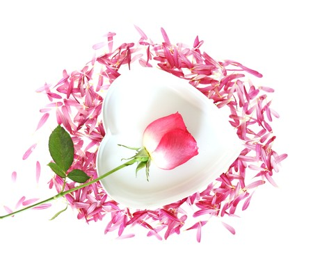 Rose and chrysanthemum petals forming a heart  photo