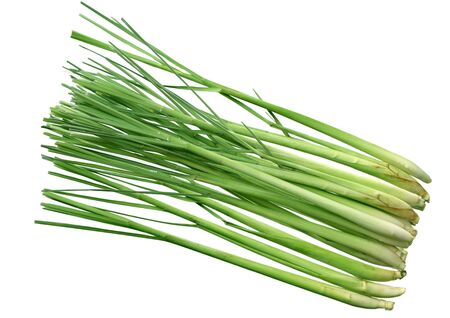 Group of fresh lemongrass stems isolated on white