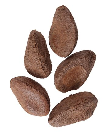 bonkers: Group of brazil nuts isolated on white background