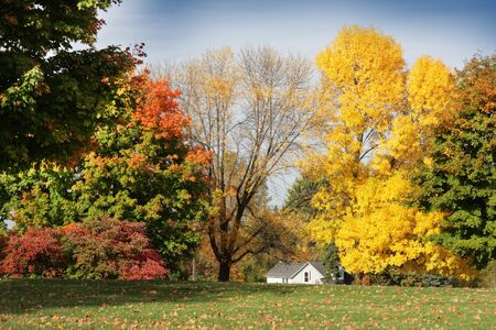 Small white house behind the colorful trees Stock Photo - 4248375