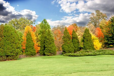 Gray clouds on blue sky and colorful autumn trees Stock Photo - 4248360