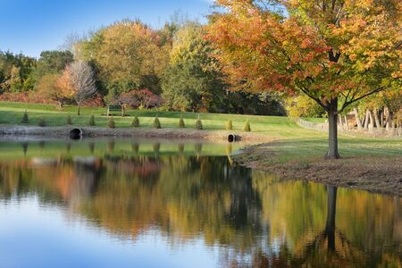 Scenery of autumn season in the park Stock Photo - 4248369