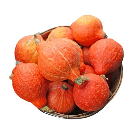fresh orange pumpkin gourds isolated on white photo