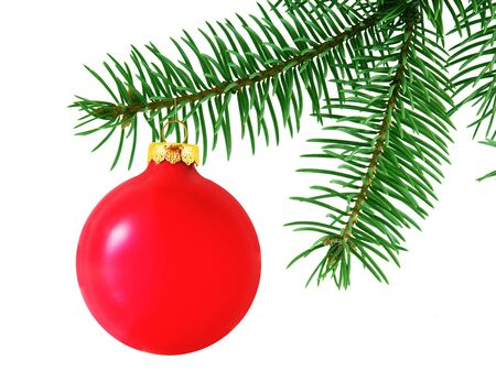 Red ornament ball hanging over real pine branch isolated on white photo