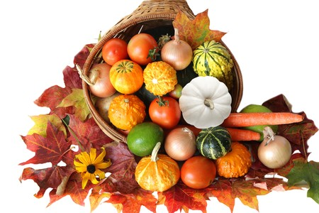 Colorful vegetables autumn harvest isolated on white photo