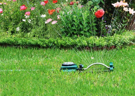 Watering grass and flower in the backyard Banco de Imagens