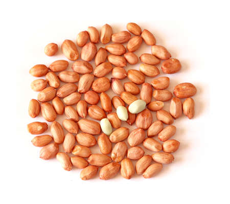 Peanut Seeds Stock Photo - 4282030