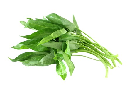 Water spinach ong coy