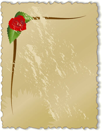 vector illustration of an old paper with a red rose