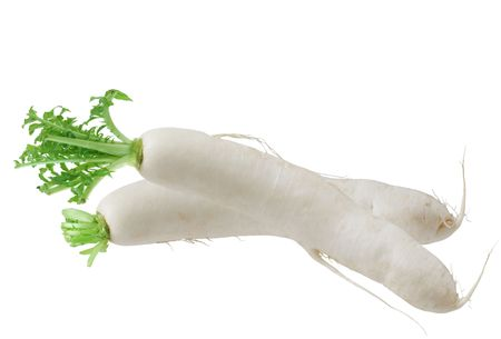 single fresh daikon white radish root isolated