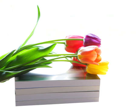 Bunch of colorful tulips flower over the books photo