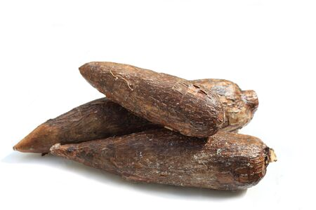 starchy food: Three yuca roots isolated on white background Stock Photo