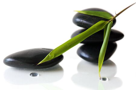 Bamboo leaves and black pebbles reflecting on white background photo