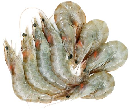 Group of raw shrimps isolated on white