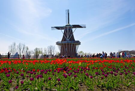 traditional windmill: windmill at Holland Michigan in May 2009 Tulip Festival