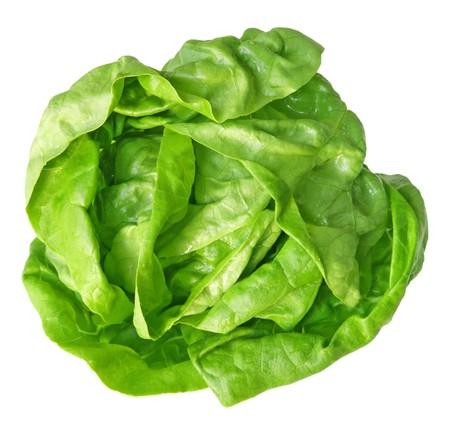 lettuce: Single fresh boston lettuce isolated on white background