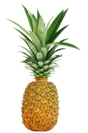 Single pineapple fruit isolated on white background
