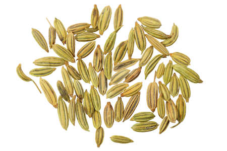 aniseed: Dried anise seeds aniseed isolated over white background