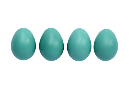 Blue robin eggs isolated on white