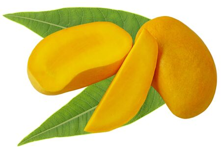 ripe: Mangoes with leaves isolated on white