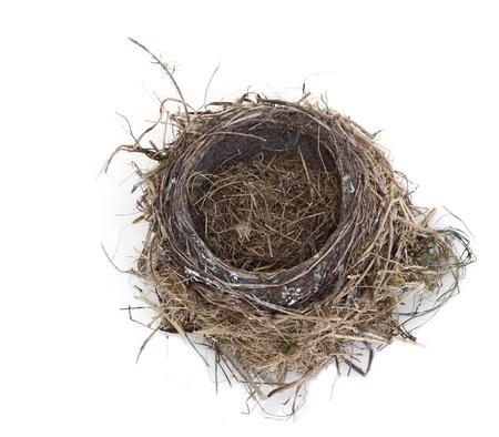 Empty robin bird nest isolated on white background