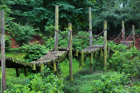 Wooden bridge in the park, summer time