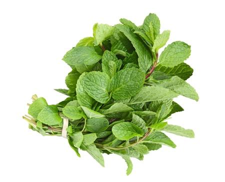 menta: Fresca hierba com�n paquete de menta aislado en blanco