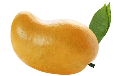 Single tropical mango fruit isolated on white