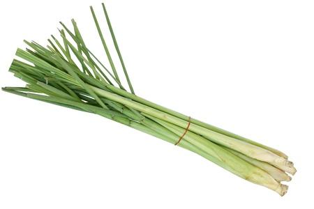 lemongrass: Bundle of fresh lemongrass isolated on white