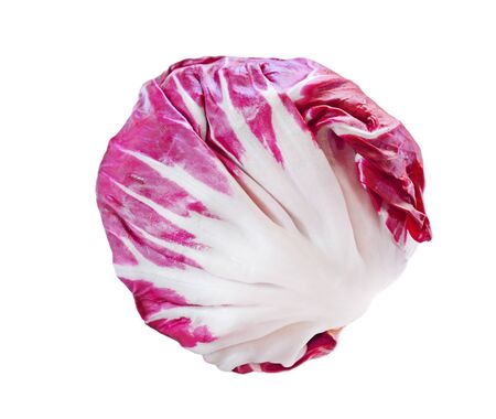 vegetable cook: Fresh radicchio red cabbage isolated on white background Stock Photo