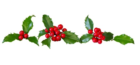 Row of holly leaves and red berries isolated on white photo