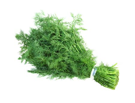 potherb: Bunch of fresh fennel leaves isolated on white background