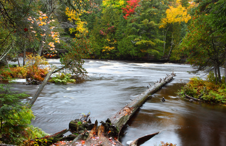 tannin: View of lower Tahquamenon from island