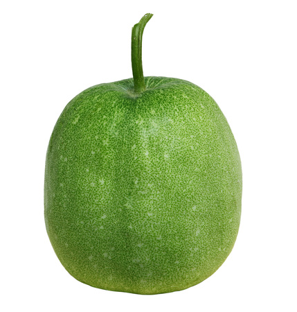gourds: Benincasa hispida winter melon wax gourd isolated on white