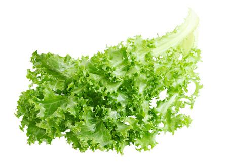 andijvie: Salade krulandijvie cichorei op een witte achtergrond Stockfoto