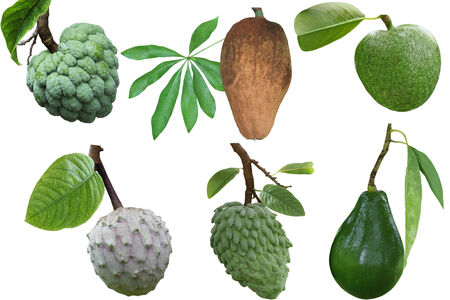 annona: Set of tropical fruit and spice isolated on white background