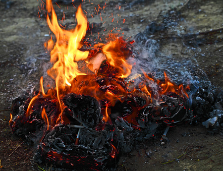 Dangerous burning trash products: toxic gases, particulate matter,and ash residue.