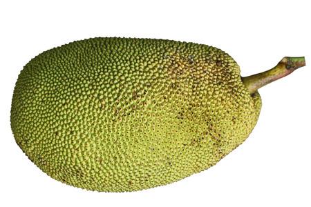 Ripe Jackfruit Jack Fruit isolated on white background