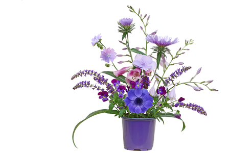 Purple planter with autumn flowers  hosta, aster, pansy, loosestrife, hortensia isolated on white background Archivio Fotografico