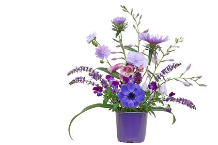arreglo floral: Plantador púrpura con flores de otoño hosta, aster, pensamiento, salicaria, hortensia aislado en fondo blanco