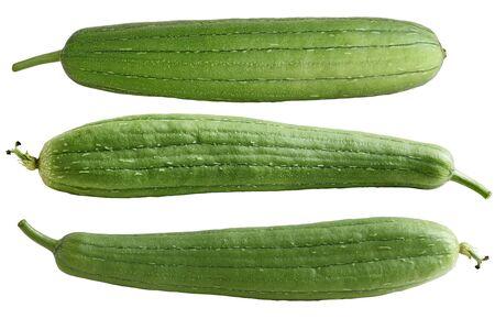 cylindrica: Set of three Sponge Gourd Vegetable Sponge( Luffa cylindrica) isolated on white background